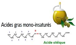 huile olive omega 9